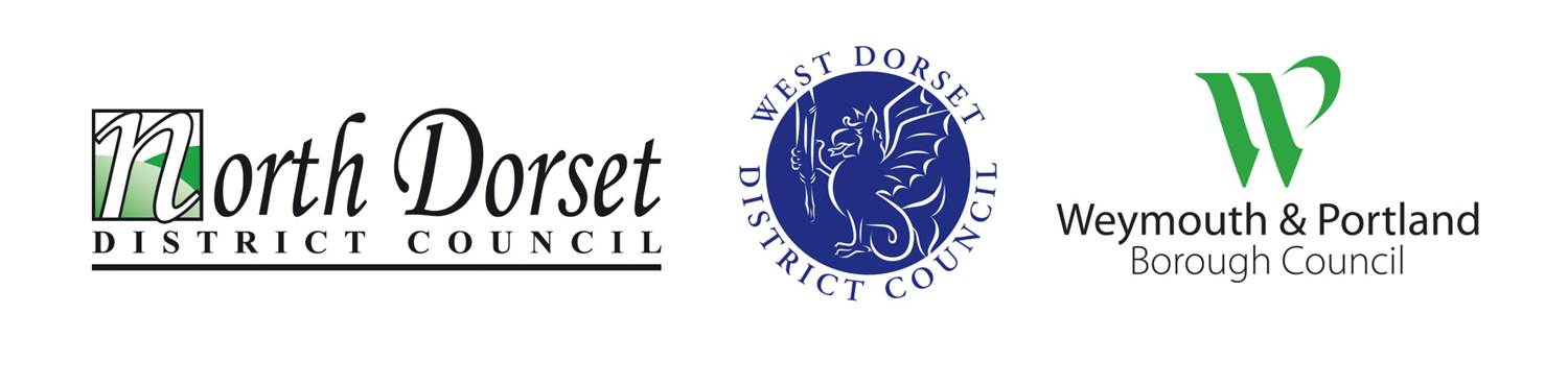 Dorset Councils Partnership logo